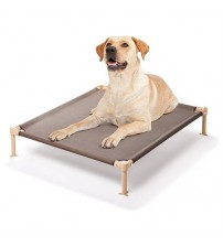 Medium Elevated Cool Cot Dog Bed