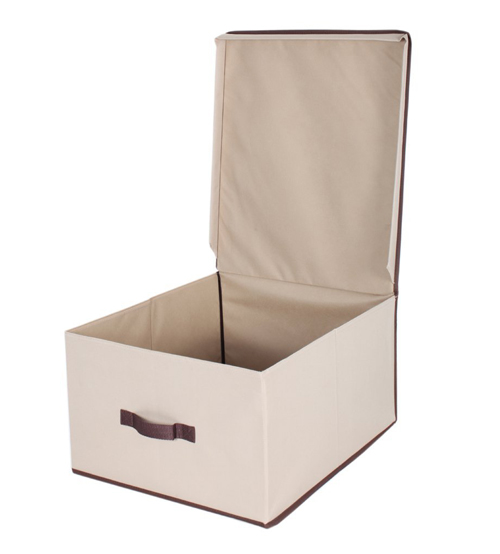 Storagemaniac Foldable Polyester Canvas Storage Box