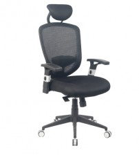 VIVA OFFICE® Comfort Ergonomic Mesh High Back Multifunction Swivel Office Chair, Office Task Chairs with Adjustable Arms and Seat - VIVA00881